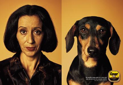 köpekler ve sahipleri 2