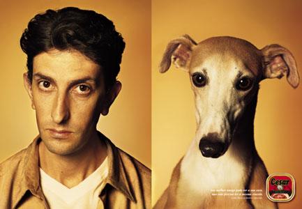 köpekler ve sahipleri 4