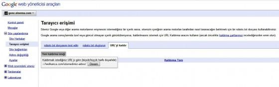 Google Webmaster Tools URL kaldır