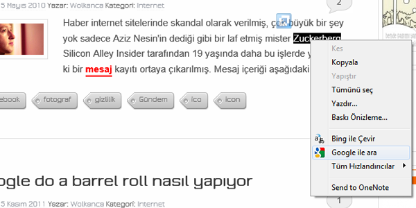 ie-gogle-turkce2