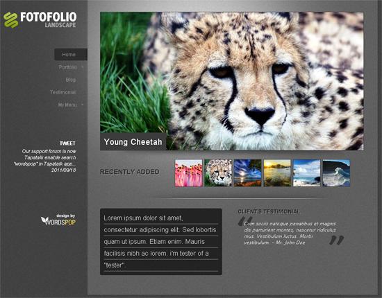 fotofoliolandscape -2011 en iyi ücretsiz temalar