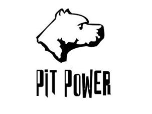 PitPower.info