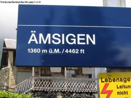 amsigen
