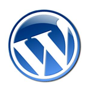 wordpress-css