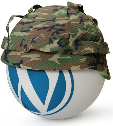 wordpress guvenlik