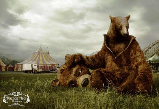 Costume Bear