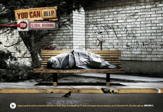 Homeless Seal