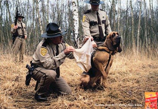 Pedigree Police Dog