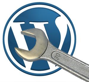 Wordpress çöp kutusu ayarı