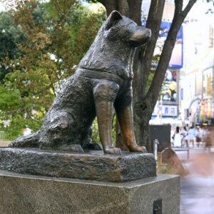 Hachiko heykeli - Tokyo