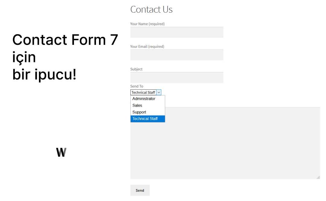 Contact Form 7 eklentisi için ipucu