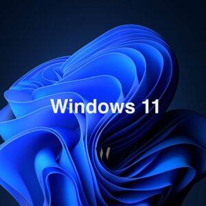 Windows 11 - memesis